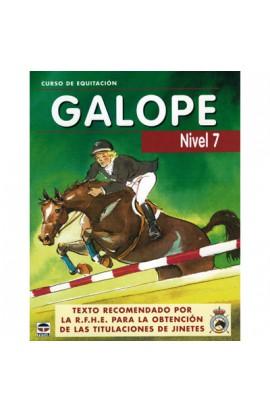 Libro: Curso de equitación. Galope nº 7